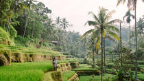 Bali All Inclusive: Ubud Rice Terraces, Temples & Volcano, Ubud