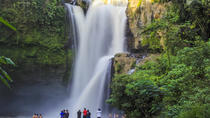 Bes Of Central Bali: Waterfall, Water Temple & Rice Fields, Ubud, Attraction Tickets