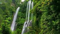 Private Full-Day Tour Sekumpul Waterfall Bali, Ubud, Full-day Tours