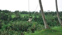 UNESCO Bali Swing : Tours and water Temple Visit, Ubud, Cultural Tours