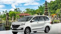 Your Bali Private Driver and Tours, Ubud, Private Drivers