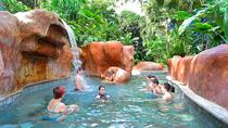 Baldi Hot Springs tickets with two meals in Arenal, La Fortuna, Theme Park Tickets & Tours
