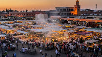 Casablanca To Marrakech Private Exotic Day Trip With Camel Ride, Casablanca, Nature & Wildlife