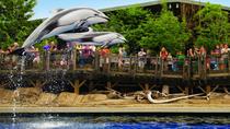 Skip the Line: Vancouver Aquarium Admission, Vancouver, null