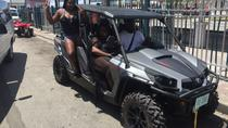 3 Hour (4 passenger) Buggy City Tour with Beach Break Inclusive of Lunch, Nassau, Cultural Tours