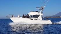 FAMILY AND FISHING TRIPS IN PUERTO BANUS (MARBELLA)