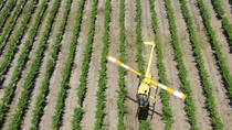 Barossa Valley Deluxe: 30-Minute Helicopter Flight, Barossa Valley, Helicopter Tours