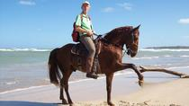 Horseback Riding from Punta Cana, Punta Cana, Horseback Riding