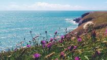 Pembrokeshire National Park 2 day tour, Cardiff, Multi-day Tours