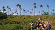 Ecotours Bushwalking, Port Vila, Walking Tours