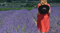Private Wine & Lavender tour in Luberon, Aix-en-Provence, Day Trips