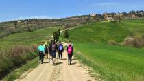 Hiking in the Gladiator fields, Siena, Hiking & Camping