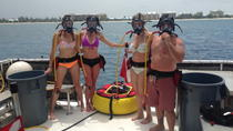 Grand Cayman Snookling Tour, Cayman Islands, Day Cruises