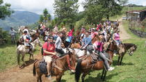 Coffee Tour In Horse Riding In Medellin, Medellín, Coffee & Tea Tours