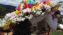 Tour de las Flores y Silleteros From Medellin, Medellín, Cultural Tours