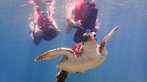 Scooter Snorkeling, St John's, 4WD, ATV & Off-Road Tours
