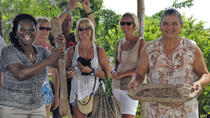 Dominican Republic Cultural Safari Tour, Punta Cana, Day Trips