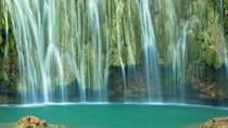 El Limon Waterfall and Bacardi Island Tour from Punta Cana, Punta Cana, Dolphin & Whale Watching