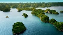 Full Day Los Haitises National Park Tour with Lunch, Punta Cana, Nature & Wildlife
