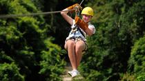 Monkeyland and Zipline Adventure from Punta Cana, Punta Cana, Nature & Wildlife