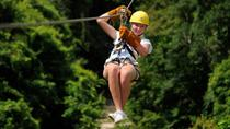 Zipline Adventure from La Romana, La Romana, Day Trips