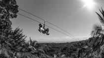 Zipline Adventure in El Limón, Samaná, Half-day Tours
