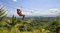 Zipline Adventure in El Limón, Samaná, Half-day Tours