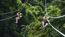 Zipline Adventure in Punta Cana, Punta Cana, Day Trips