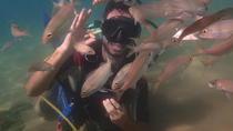 Scuba Dive Discovery, Salvador da Bahia, Scuba Diving