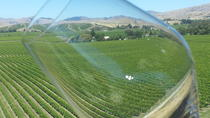 Relaxed Fun Full Day Wine Tour from Blenheim, Blenheim, Full-day Tours
