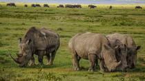 Lake Nakuru National Park Full Day, Nairobi, Attraction Tickets