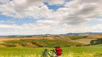 Tuscan Country Bike Tour from Florence Including Wine and Olive Oil Tastings, Florence