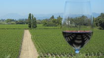 Half-Day Wine Country Tour