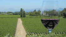 Small-Group Vintage Wine Country Tour, San Francisco, Multi-day Tours