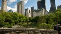 Central Park Walking Tour and Photoshoot, New York City, Running Tours