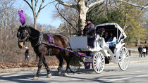 Passeio de carruagem no Central Park com fotógrafo profissional, New York City, Private Sightseeing Tours