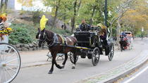 Private Central Park Horse and Carriage Ride, New York City, Horseback Riding