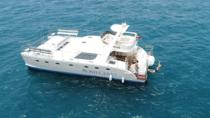 Luxury Small Group Catamaran Trip with Whale & Dolphins Watching, Food & Drinks & Transfers, ...