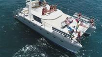 Small Group Catamaran Trip with Sea Life Watching, Meal and Transfers, Tenerife, Catamaran Cruises