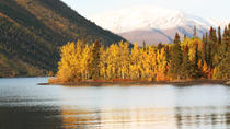 5-Day Golden Aurora Circle: Yukon and Alaska Summits, Whitehorse, Cultural Tours