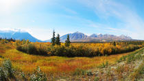 Arctic Day: Kluane National Park Tour, Whitehorse, Attraction Tickets