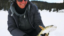 Yukon Ice Fishing and Snowshoeing Tour, Whitehorse, Hiking & Camping