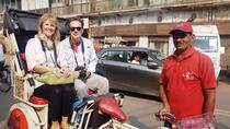 Luxury Rickshaw Tour of Old Delhi, New Delhi, Custom Private Tours
