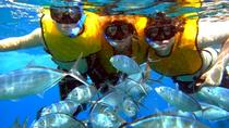 Isla Mujeres Deluxe All-Inclusive Day Trip from Cancun or Riviera Maya, Cancun, Day Cruises