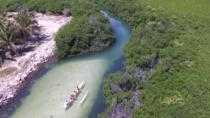 Mangrove Kayak Ecotour from Galion Beach, Grand Case, Kayaking & Canoeing