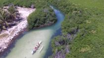Mangrove Kayak Ecotour from Grand Case, Grand Case, Kayaking & Canoeing