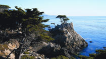 Day Trip to Monterey and Carmel via California Coast, San Francisco