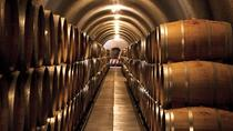 Wine & Cheese, Olive Oil, and Chocolate Tasting in Wine Country!, San Francisco, Day Trips