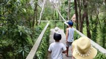 Boneo Maze: General Entry Ticket, Mornington Peninsula, Obstacle Courses