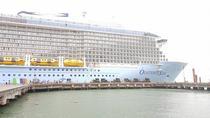 PRIVATE SHORE EXCURSION to Visit MY SON HOLYLAND from TIEN SA or CHAN MAY Port, Da Nang, Ports of...